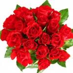kwiaty-piekny-motyl-na-pulpit-ptXGAvZ