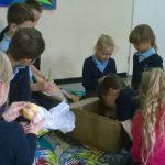 projekt-szkoly2